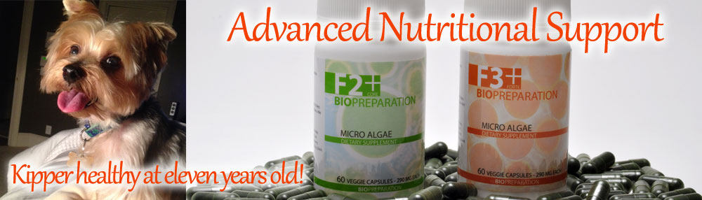 Biosuperfood sale biopreparation sale